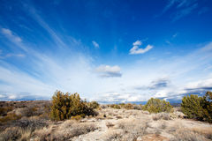Arizona high desert Royalty Free Stock Photo