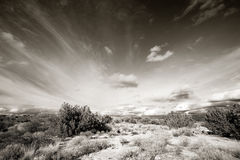 Arizona high desert Stock Photo