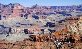 arizona jaru uroczysty krajobrazowy park narodowy usa Obrazy Royalty Free
