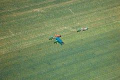 Arizona jordbruksprodukter Arkivbilder