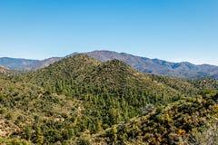 Arizona-Landschaft Stockfoto