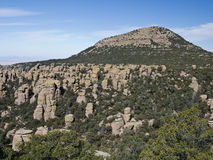 arizona liggande Arkivfoton