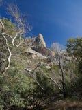 arizona liggande Royaltyfri Fotografi