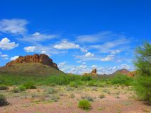 Arizona Lost Dutchman Park Stock Image