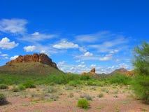 Arizona Lost Dutchman Park. Arizonan Desert Vegetation in Lost Dutchman State Park stock image