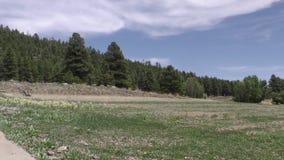 Arizona, Meer Mary, a-pan over droog lakebed van links naar rechts van Lager Meer Mary stock video
