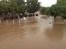 Arizona Monsoon Season Stock Photos