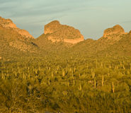 Arizona Mountain At Sunset Royalty Free Stock Photos