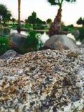 Arizona-Natur-Landschaft andere Stockfoto