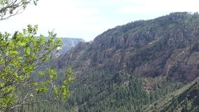 Arizona, Oak Creek Canyon, A mountain with many rock formations and trees in Oak Creek Canyon