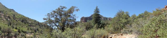 Arizona, parque de la roca de la diapositiva, opinión de A del barranco de la cala del roble de la roca de la diapositiva imagenes de archivo