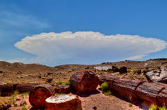 Arizona- Petrified Forest National Park. While standing on the trails leading through the petrified forest in June, a massive thunderstorm was approaching Royalty Free Stock Images