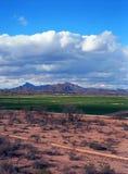 Arizona pustyni gospodarstwa rolne Obrazy Royalty Free