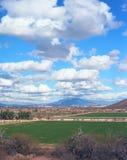 Arizona pustyni gospodarstwa rolne Zdjęcie Stock