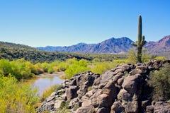Arizona pustyni i Verde rzeki krajobraz obraz royalty free