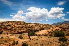 Arizona pustyni scena Zdjęcia Royalty Free