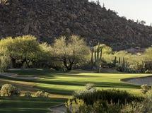 Arizona pustyni stylu pola golfowego społeczności położenie Fotografia Royalty Free