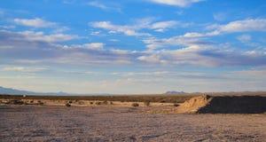 Arizona pustynia z niebieskim niebem Fotografia Stock