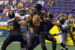Arizona Rattlers Arena Football Quarterback. Arizona Rattlers quarterback, Nick Jessica Davila, drops back to pass against the San Jose SaberCats on April 6 Stock Photo