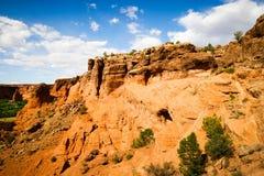Arizona Red Rock Desert Scene Royalty Free Stock Photos