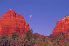 arizona red vaggar sedona Arkivbild
