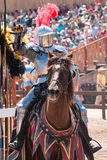 Arizona Renaissance Festival Jousting Royalty Free Stock Photo