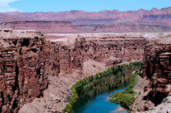 Arizona river. Green Colorado River flows through Arizona desert canyon stock photos