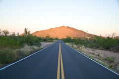 Arizona road 1 Stock Photography