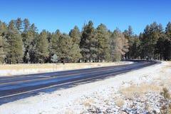 Arizona road Royalty Free Stock Image