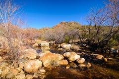 Arizona rzeka Zdjęcia Royalty Free