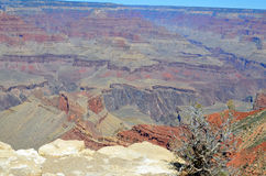 Arizona's Grand Canyon Royalty Free Stock Photography