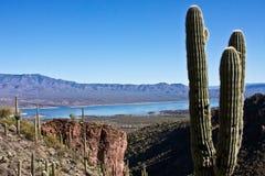 Arizona's Lake Roosevelt Stock Photos