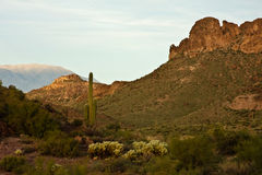 Arizona's Lost Dutchman State Park Royalty Free Stock Photo