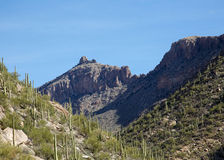 Arizona's Sabino Canyon Stock Photography
