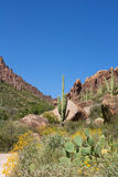 Arizona's Superstition Mountains Royalty Free Stock Photo