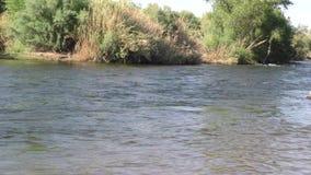Arizona, salt river, a wide view of the salt river as the water flows by. A wide view of the salt river as the water flows by stock footage