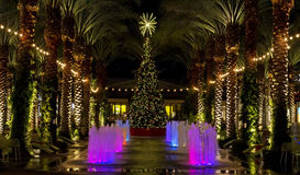 Arizona shopping mall Christmas Tree and lighted palm trees Stock Image