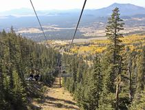 Arizona Snowbowl ` s Sceniczny Chairlift Blisko flagstengi, Arizona Fotografia Stock