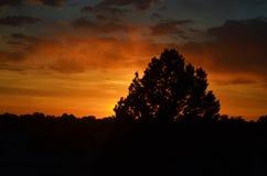 Arizona solnedgång Royaltyfria Foton