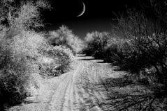 Arizona Sonora Desert road with Moon in infrared monochrome. Infrared monochrome desert moon over the southwestern USA Sonora desert Arizona road stock image