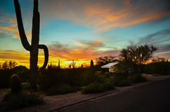 Arizona Sonoran Desert. Sunset at Usury Mountain Park near Phoenix stock photos