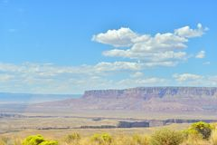 Desert in arizona. Arizona is a southwestern U.S. state. is best know the Grand Canyon, Lake Powell, Horseshoe Bend, Flagstaff, Page, National Park, Scottsdale Royalty Free Stock Images