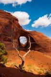Arizona/statliga Utah fodrar Arkivbild