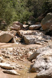 Arizona stream Royalty Free Stock Photos