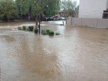 Arizona Streets in Monsoon Rain Royalty Free Stock Photography