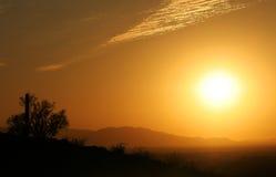 Arizona sunset. A beautiful Arizona sunset with a mountain range and cactus in the image royalty free stock photo