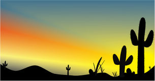 Arizona Sunset. Vector art Silhouette of cacti in front of a desert sunset