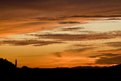 Arizona at Sunset Royalty Free Stock Image