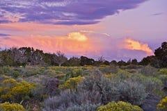 Arizona Sunset Stock Photos