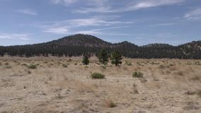 Arizona, Sunset Crater, A zoom out from Sunset Crater to see the surrounding area